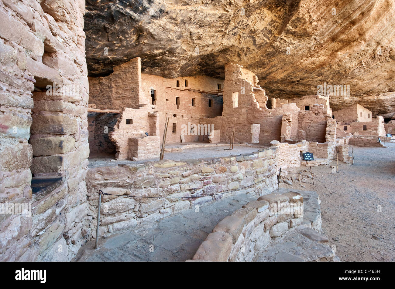 Spruce Tree House ruins in alcove at Chaplin Mesa in Mesa Verde National Park, Colorado, USA - Stock Image