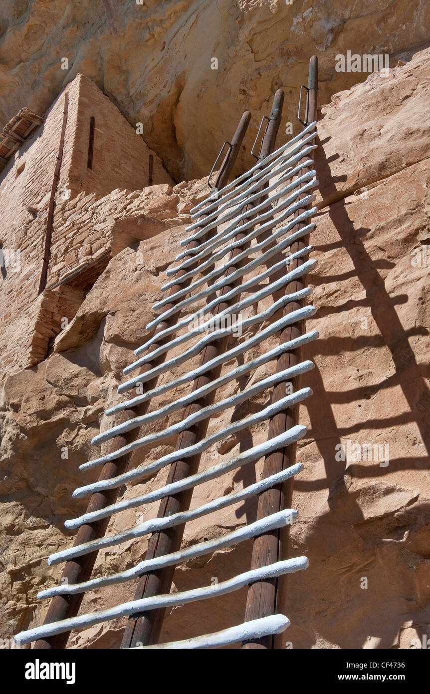 Ladder at Balcony House cliff dwelling in alcove at Chaplin Mesa, Cliff Palace Loop, Mesa Verde National Park, Colorado, - Stock Image