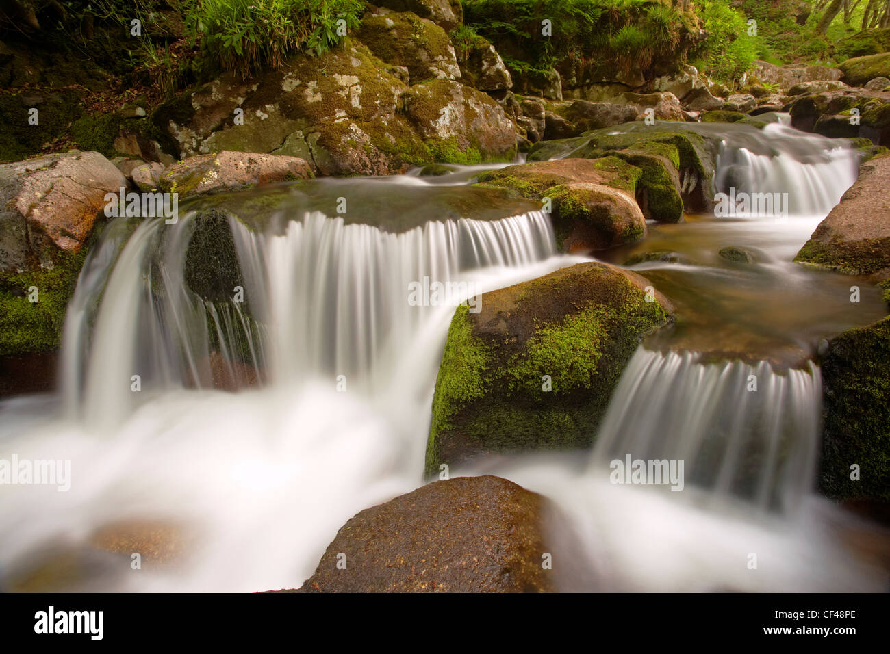 Water flowing over rocks on the River Plym at Shaugh Prior in Spring. - Stock Image