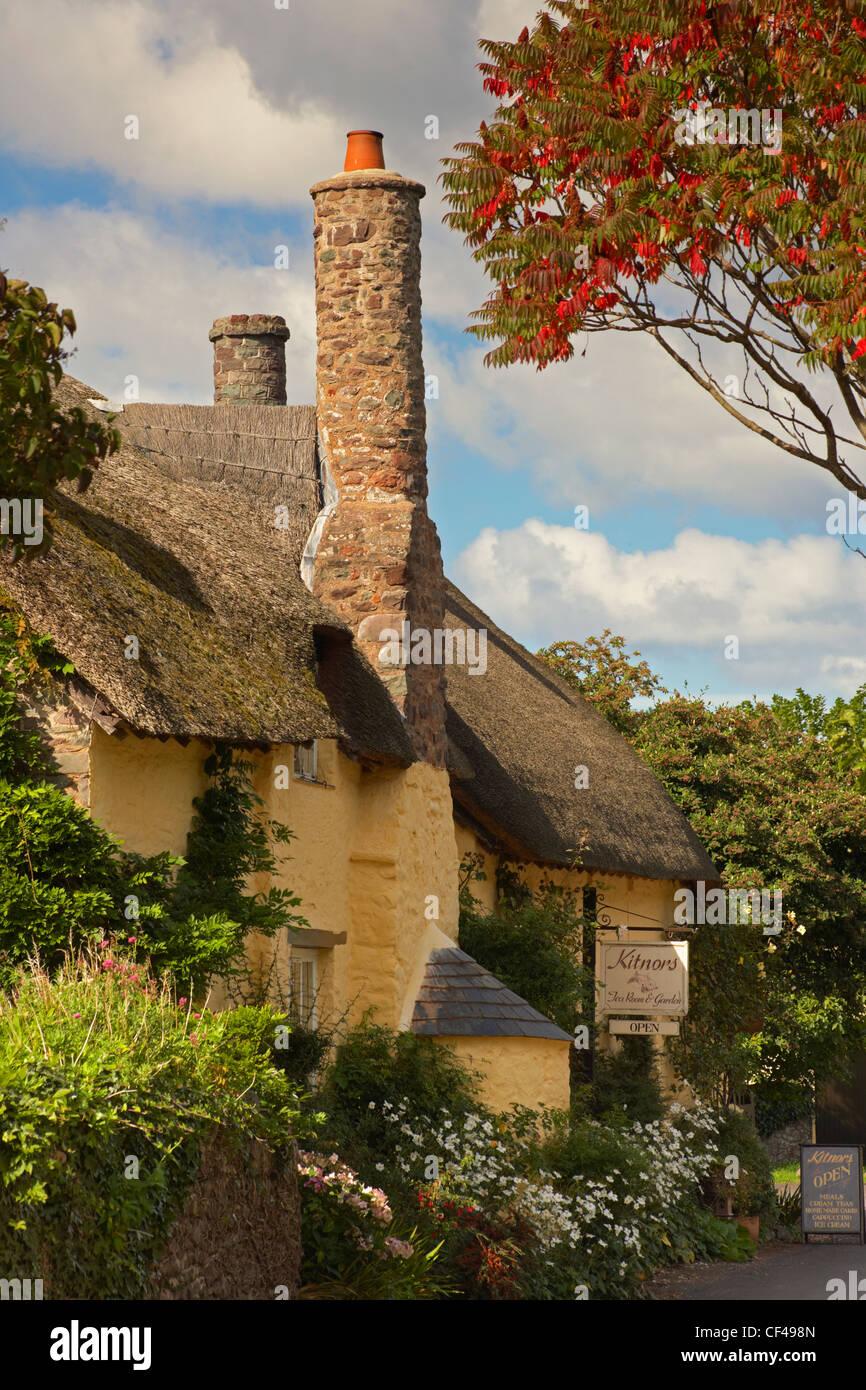 Kitnors Tea Room and Garden in an old thatched cottage in the sleepy Exmoor village of Bossington. - Stock Image