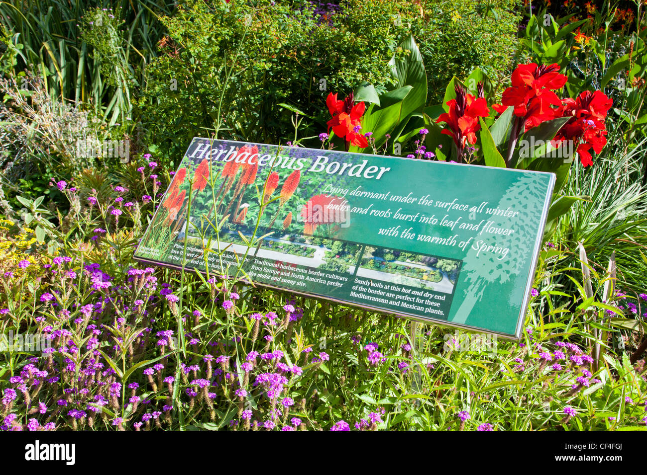 The herbaceous border in Hagley Park, Christchurch, New Zealand, in late summer, with sign. - Stock Image