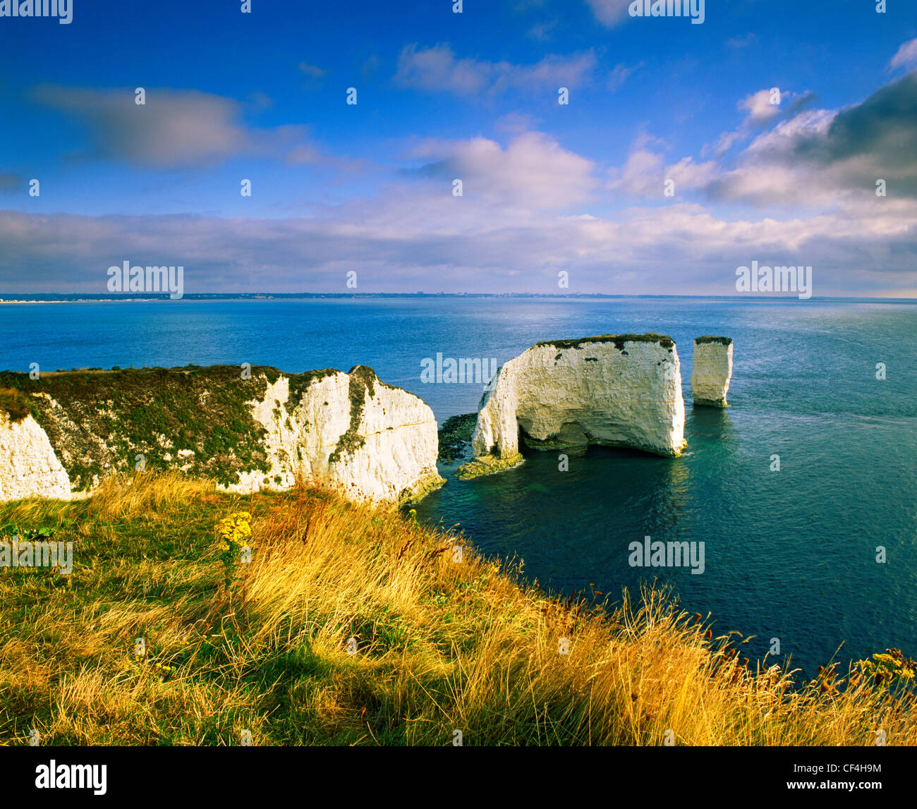 Old Harry Rocks, two chalk sea stacks located at Handfast Point, on the Isle of Purbeck. The chalk stacks mark the Stock Photo