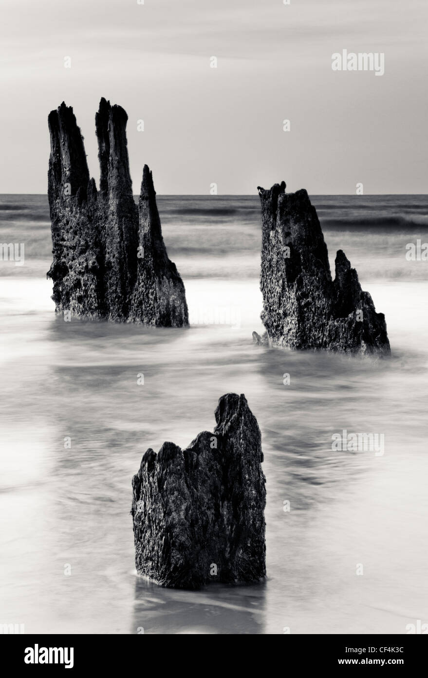 Three remaining wooden posts from an old jetty, jutting out of the sea at Walberswick in Suffolk. - Stock Image
