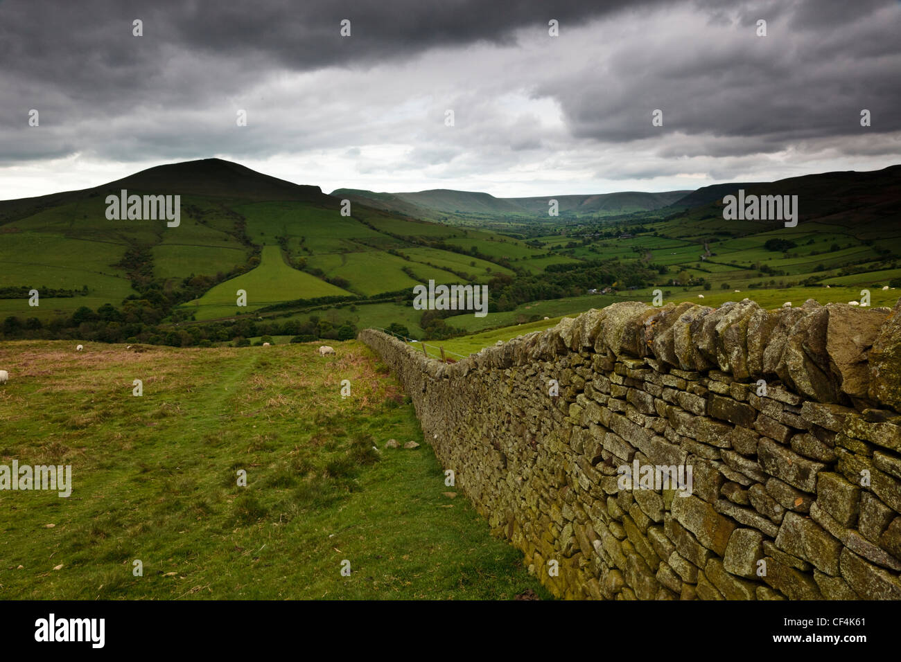 A dry stone wall leading towards Lose Hill in the Peak District National Park. - Stock Image