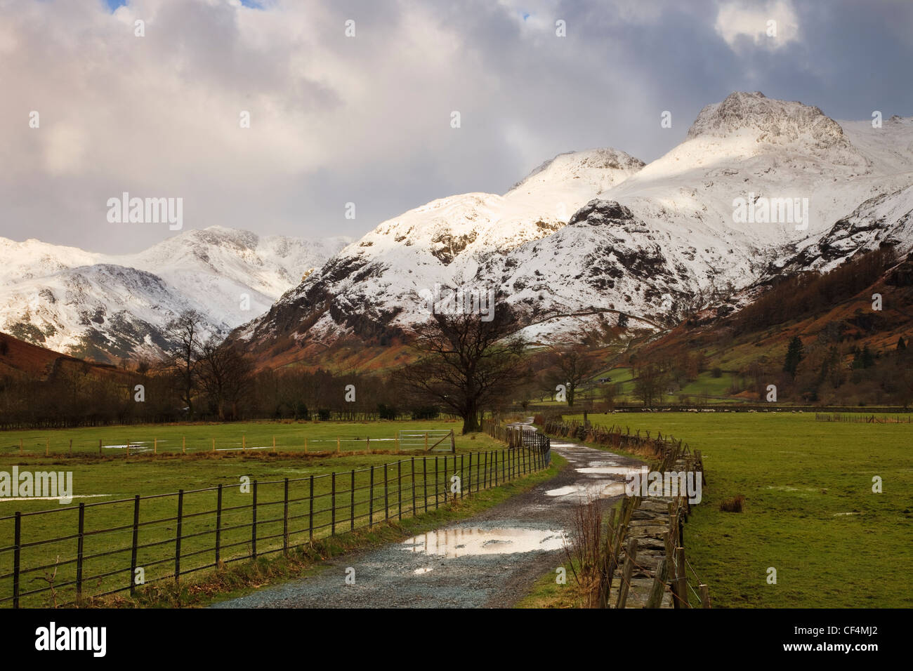 Puddles of water on a farm track leading towards the snow covered Langdale Pikes. - Stock Image