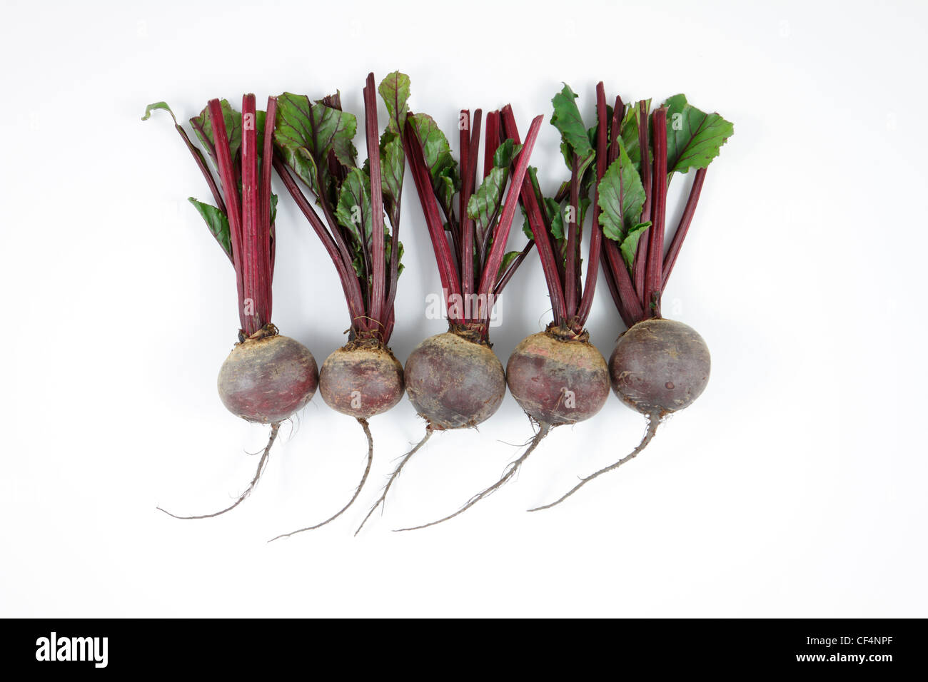 Five whole beetroots with stems and leaves on a white background. - Stock Image