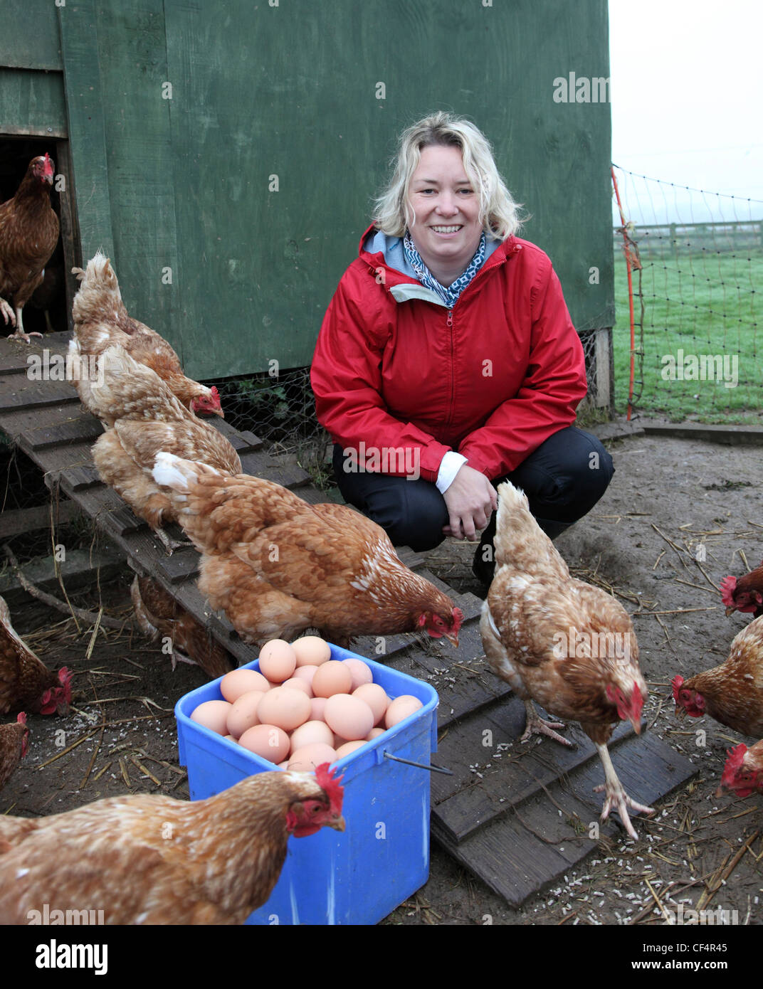 Organic farmer Jenny Young, owner of Castle Farm Shop, an organic retail outlet selling organic produce from her - Stock Image