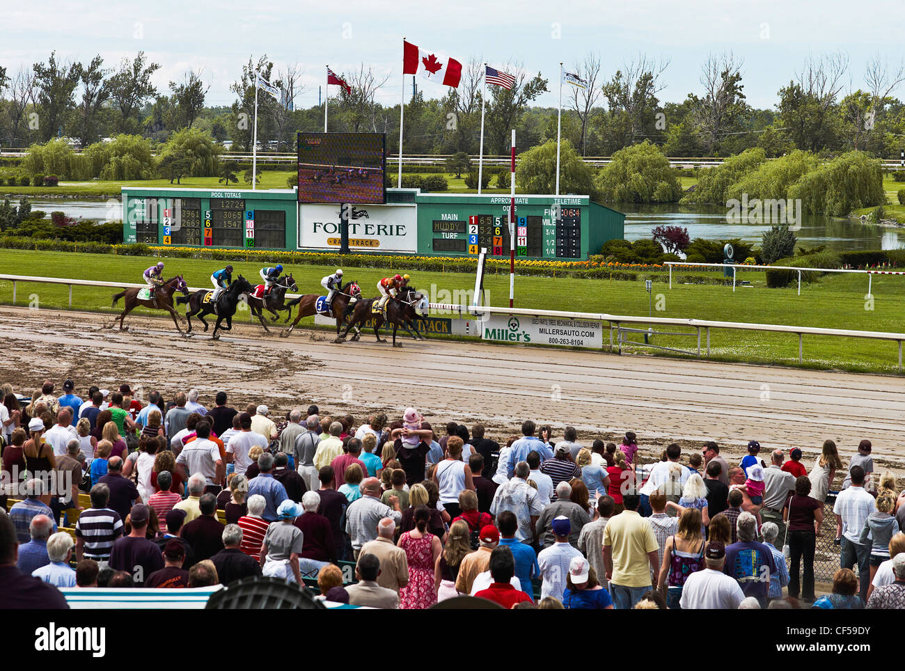 Canada, Ontario, Fort Erie, Crowd watching horse race finish at all weather dirt track. - Stock Image