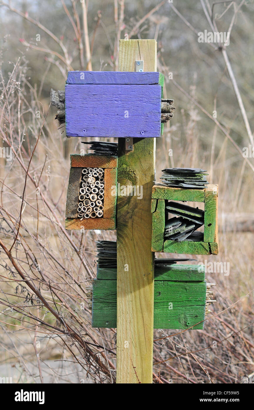 Insect friendly homes constructed at The Wildfowl and Wetlands Trust, Arundel. - Stock Image