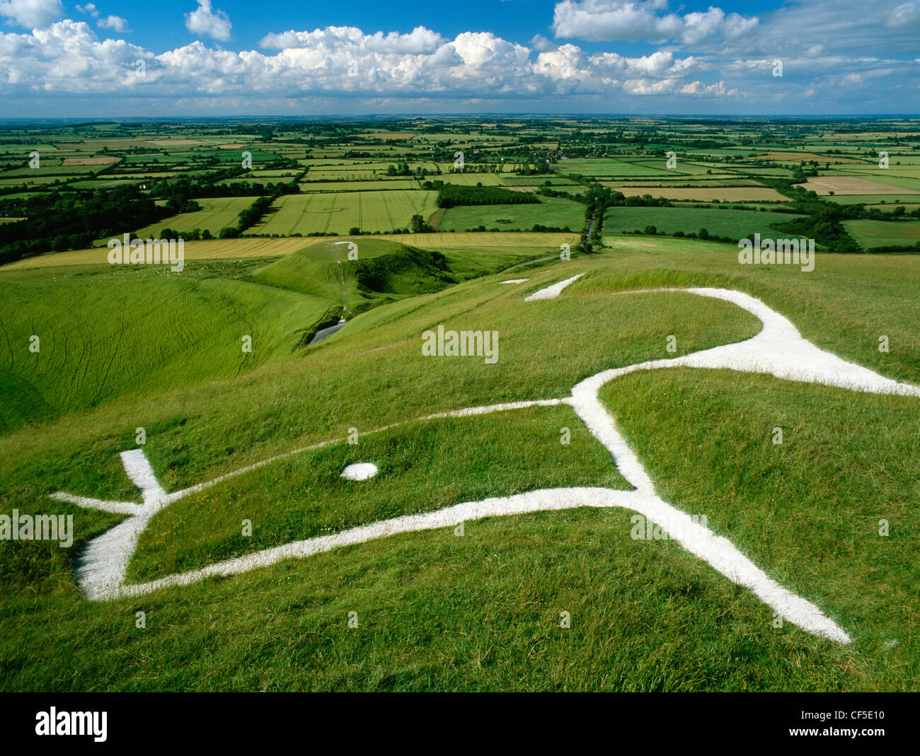 Head and eye of Uffington White Horse and Dragon, a chalk figure carved on the hillside above the flat-topped mound Stock Photo