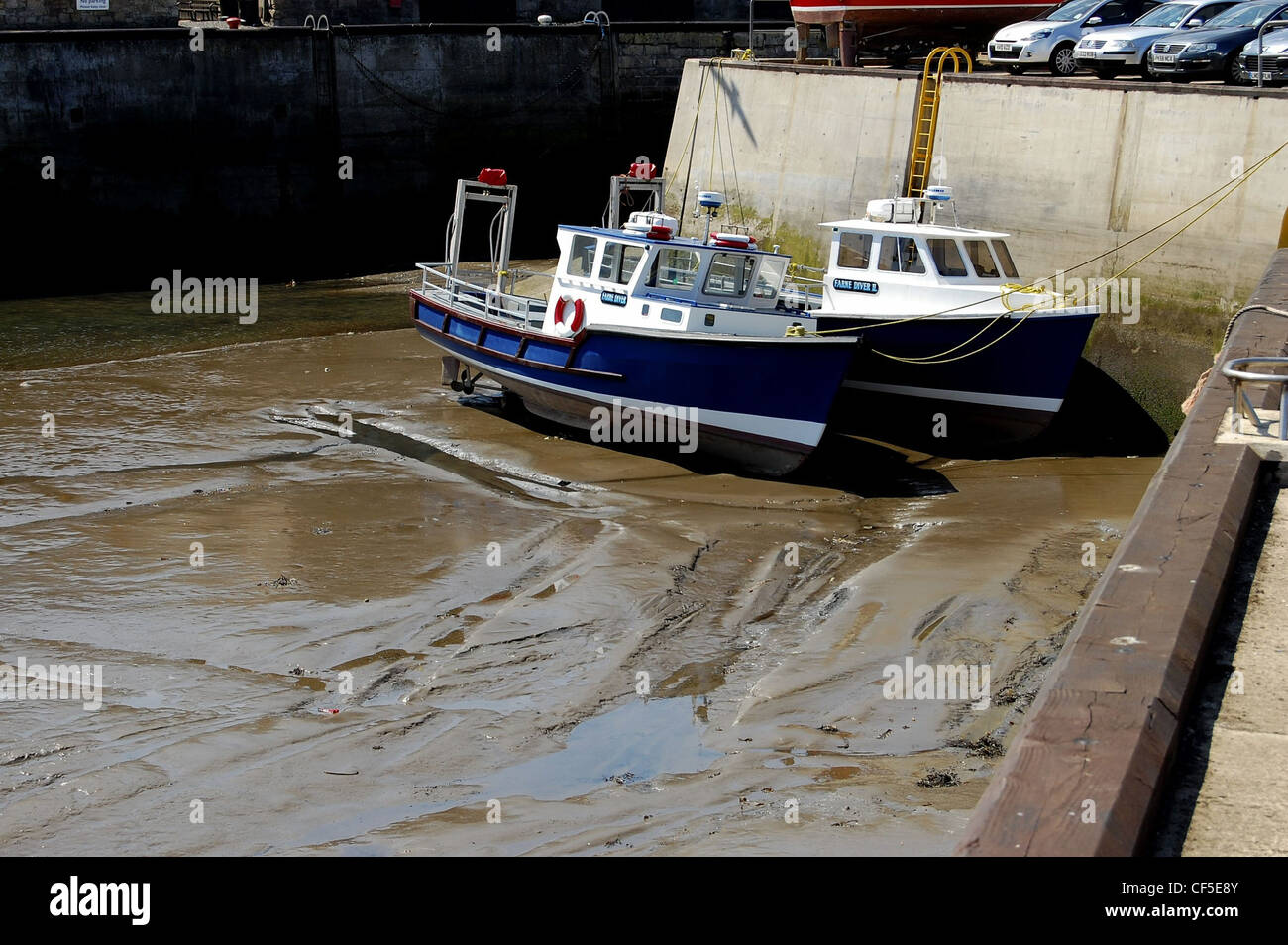 Tour boats resting on bottom of Seahouses Harbour, Northumberland at low tide - Stock Image