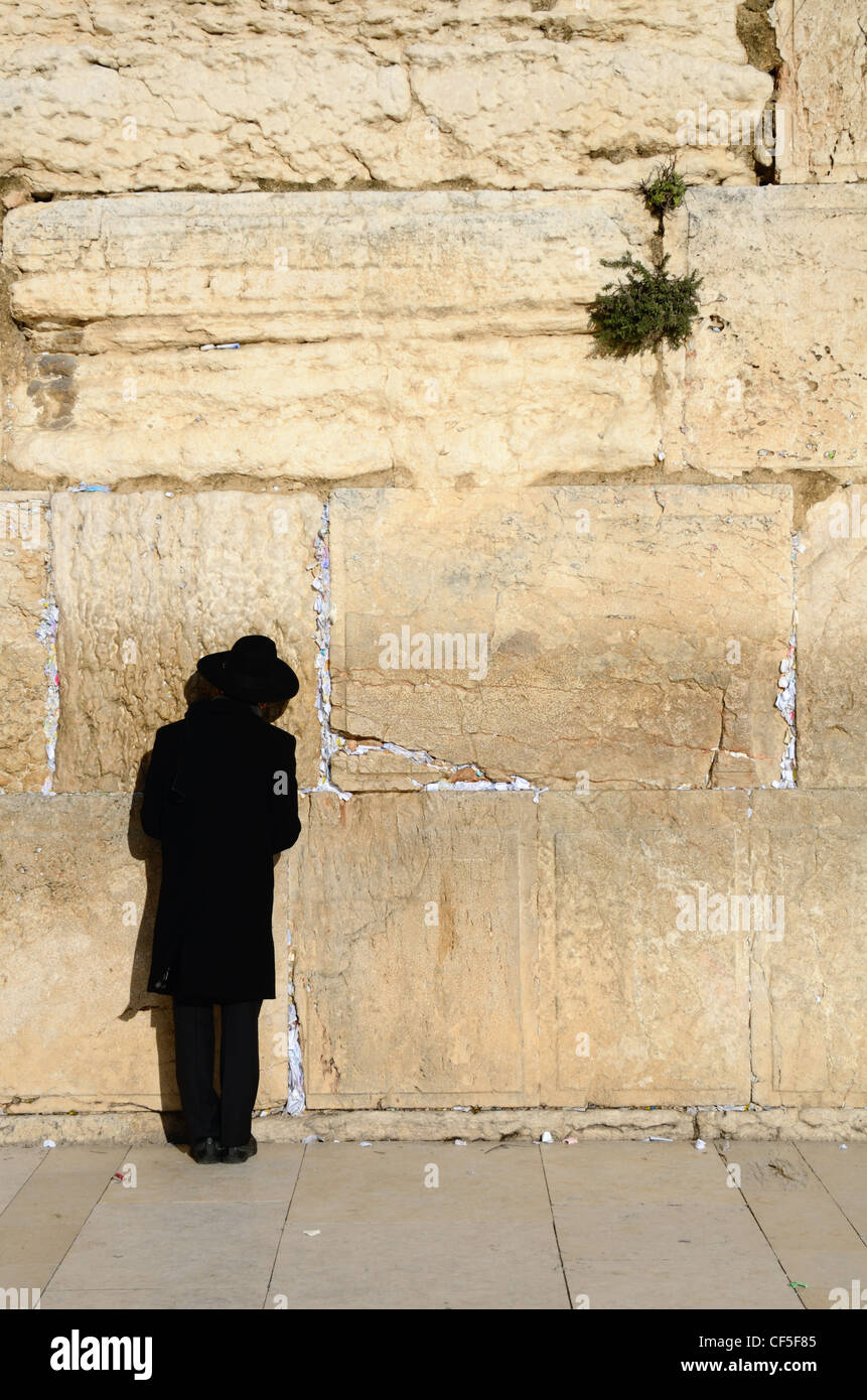 An Orthodox Jew prayers at the Western Wall in Jerusalem, Israel. - Stock Image