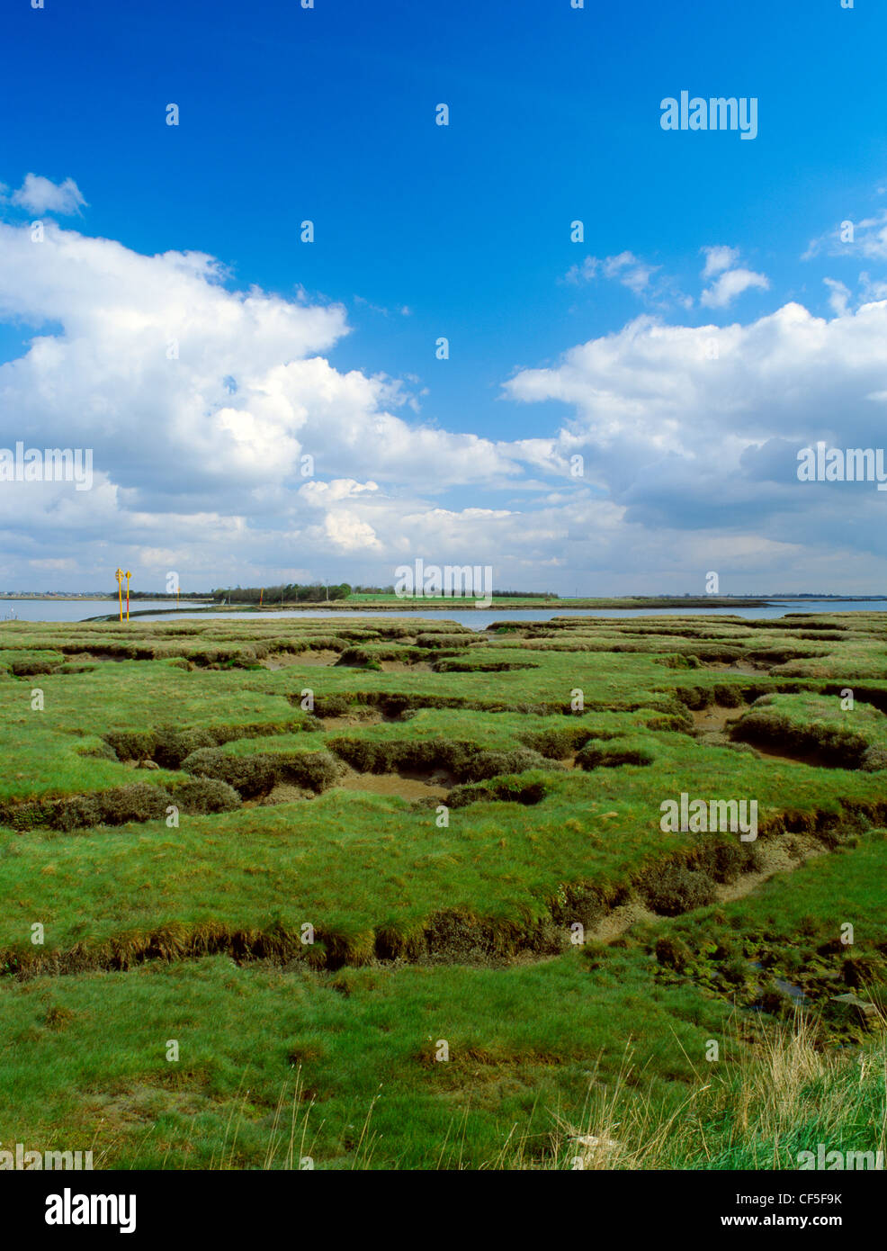 National Trust bird reserve on a tidal island reached by a causeway across the River Pant. The heroic Anglo-Saxon - Stock Image