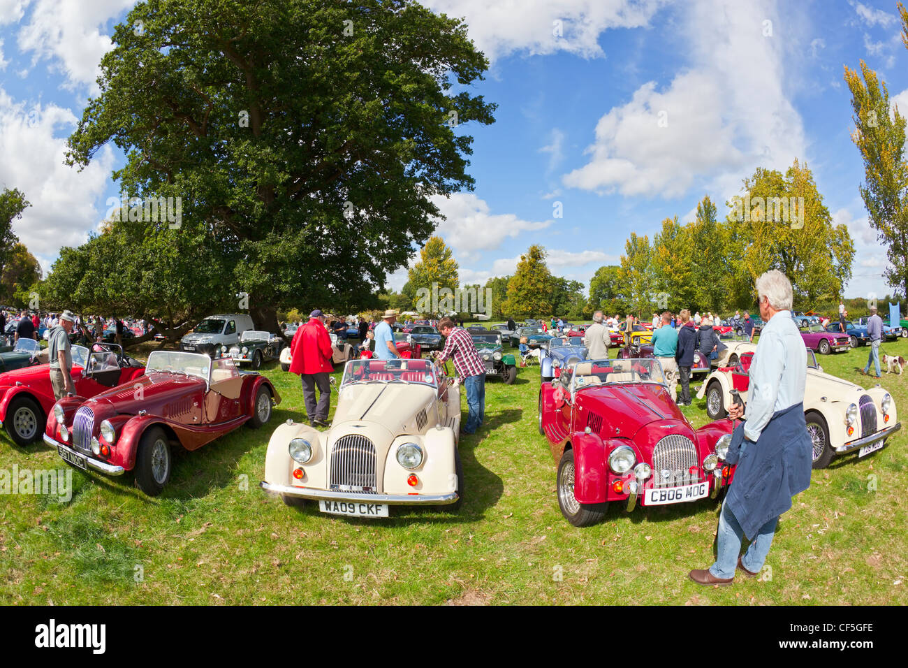 A row of Morgan sports cars on display at the Thornfalcon Classic Car meeting. - Stock Image