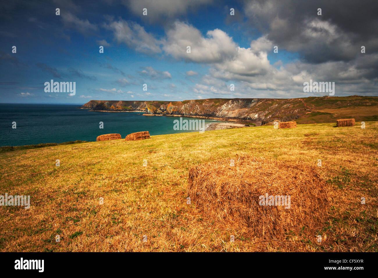A freshly cut summery meadow on the Lizard Peninsula in Cornwall. - Stock Image