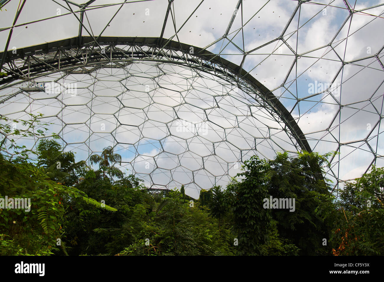 Looking to the sky through the hexagonal cladding panels covering a biome at the Eden Project. The biomes allow - Stock Image