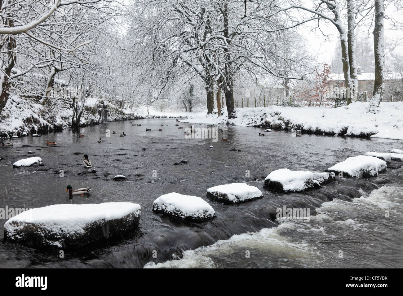Stepping stones covered in snow leading across a river. Stock Photo