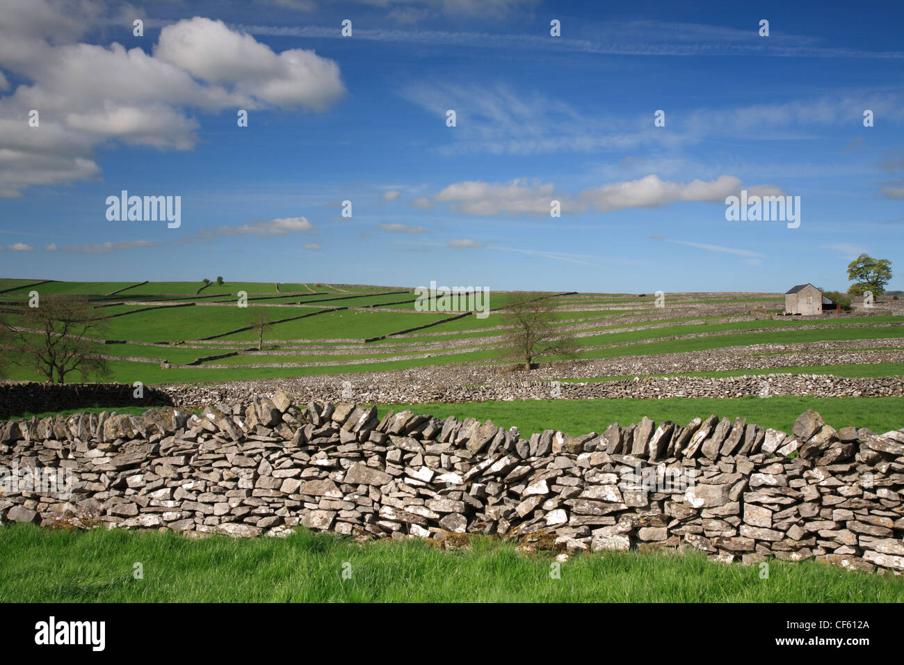 Field enclosures and barn at Litton in the Peak District National Park. Stock Photo