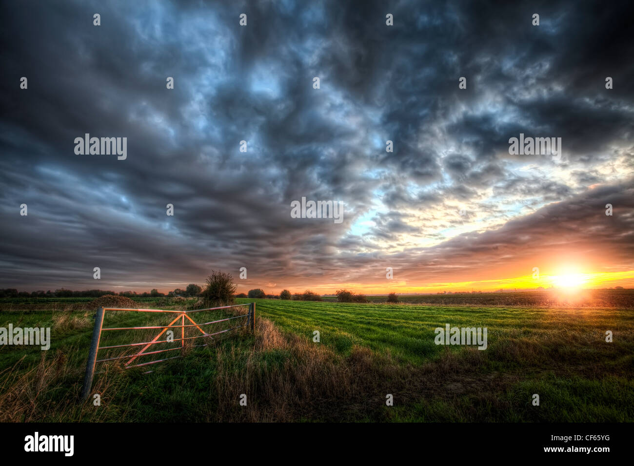 Sunrise over a field in the Cambridgeshire Fens. - Stock Image