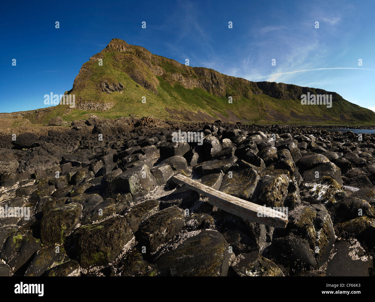 Driftwood on the interlocking basalt columns of the Giants Causeway,  a World Heritage Site and National Nature Reserve. Stock Photo