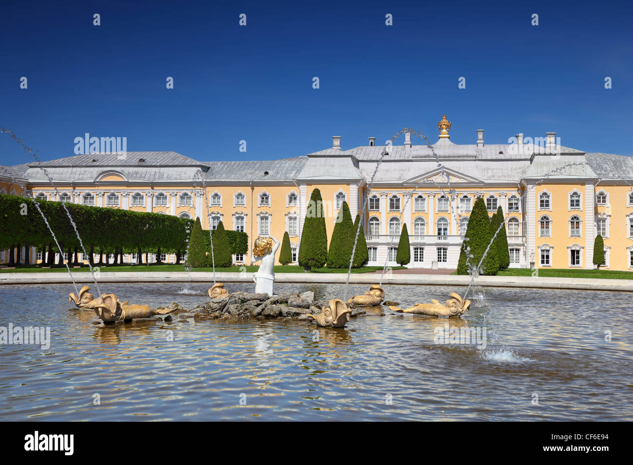 Grand Palace and fountain Oak of Peterhof,  Saint-Petersburg, Russia - Stock Image