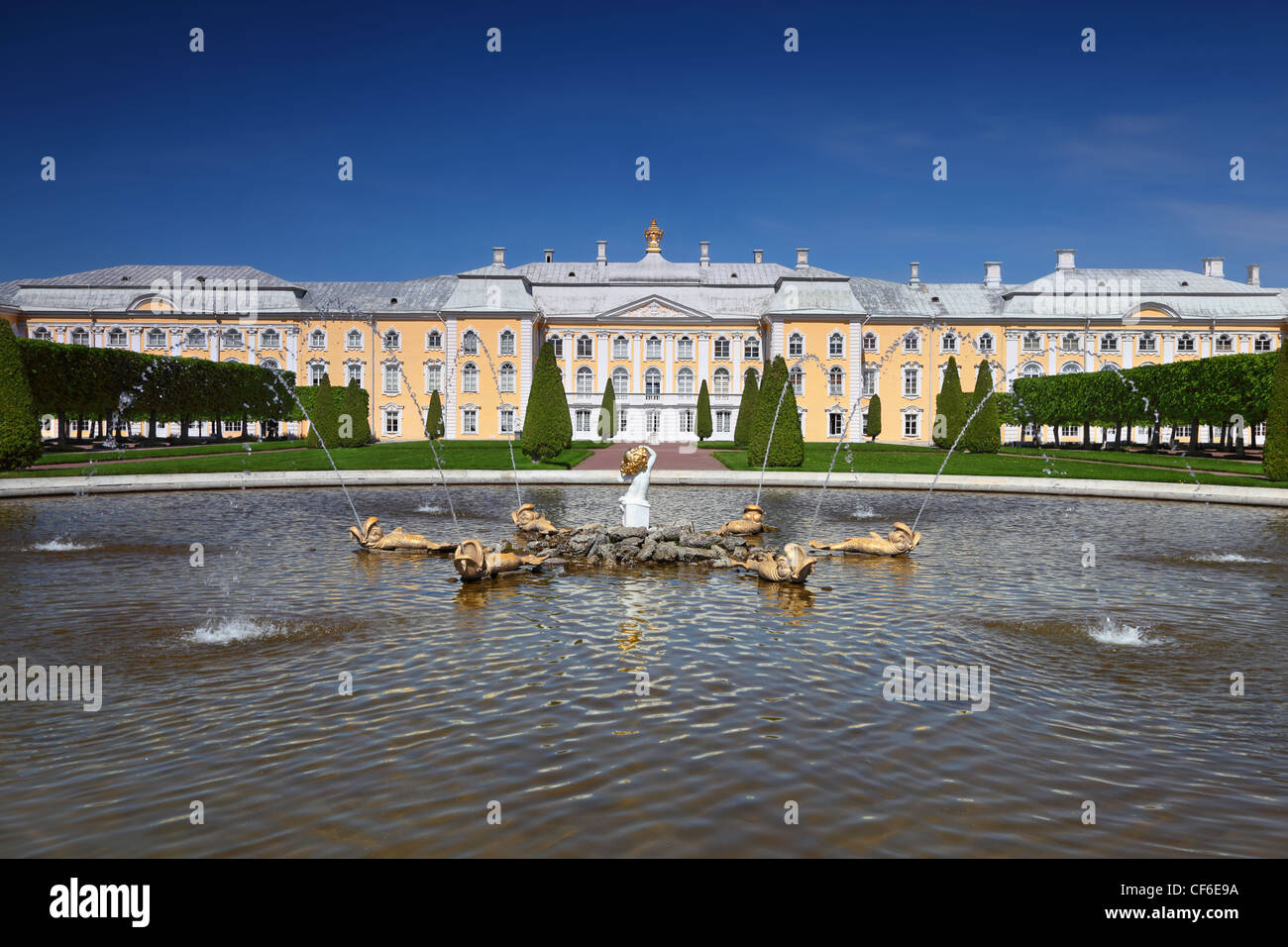 Grand Palace of Peterhof, fountain Oak  Saint-Petersburg, Russia - Stock Image