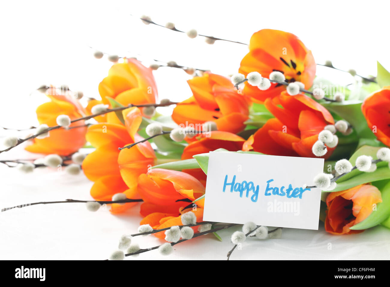 Tulips,silver-bud willow and card,Happy easter. - Stock Image