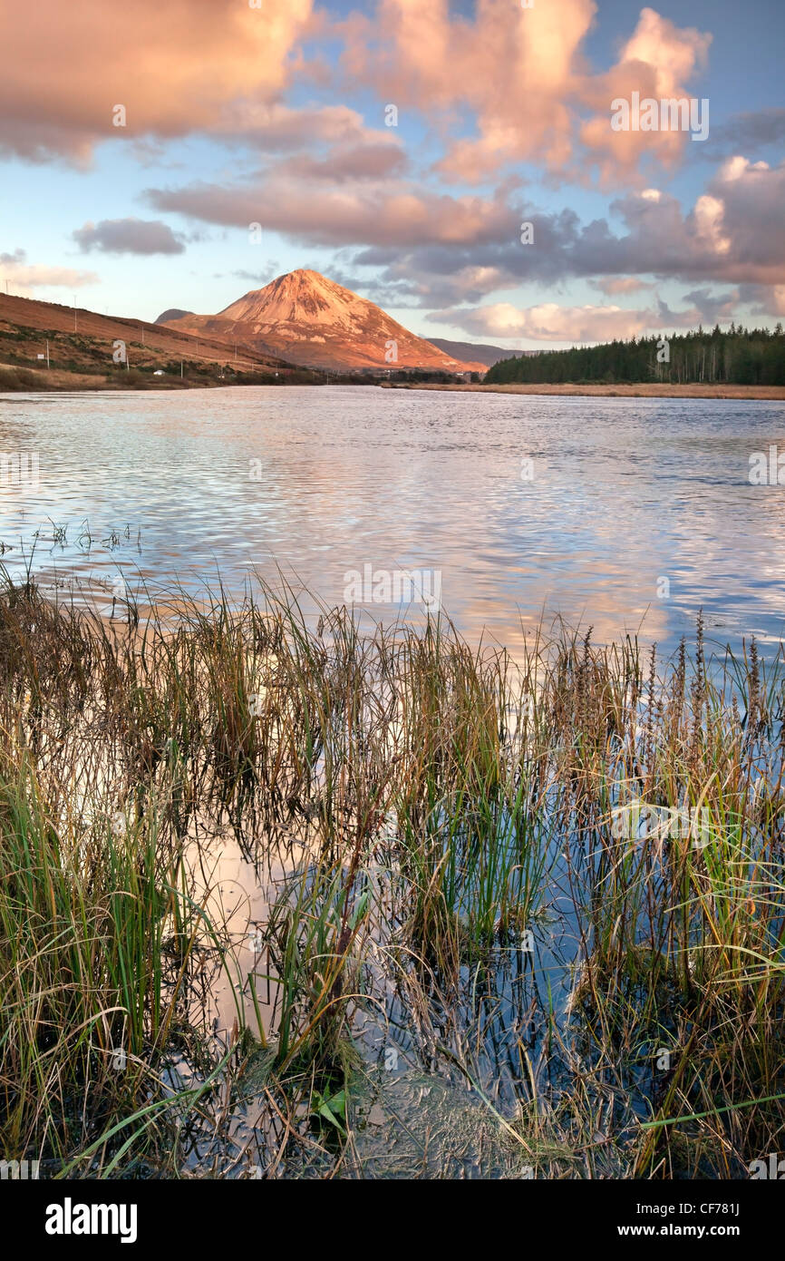 Mount Errigal at dusk. Donegal, Ireland, - Stock Image