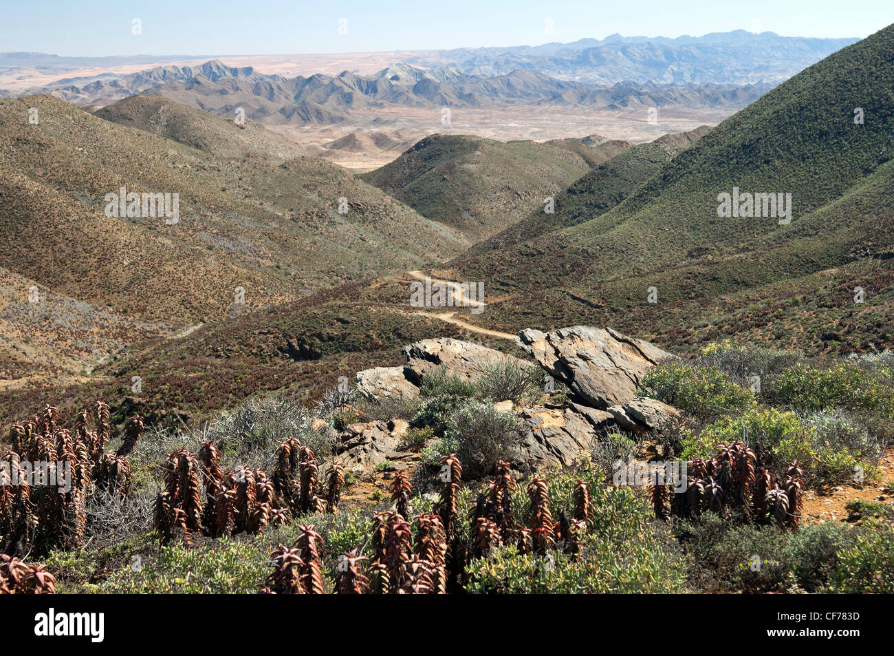 Arid valley at the Helskloof Pass, Richtersveld National Park, Namaqualand, South Africa - Stock Image