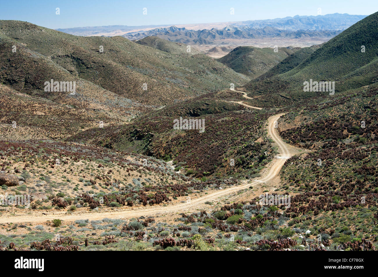 Arid valley in a Karoo landscape at the Helskloof Pass, Richtersveld National Park, South Africa - Stock Image