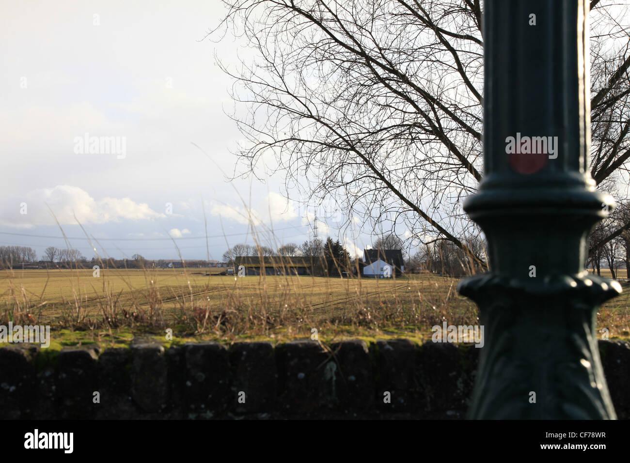 Natur im Winter - Stock Image