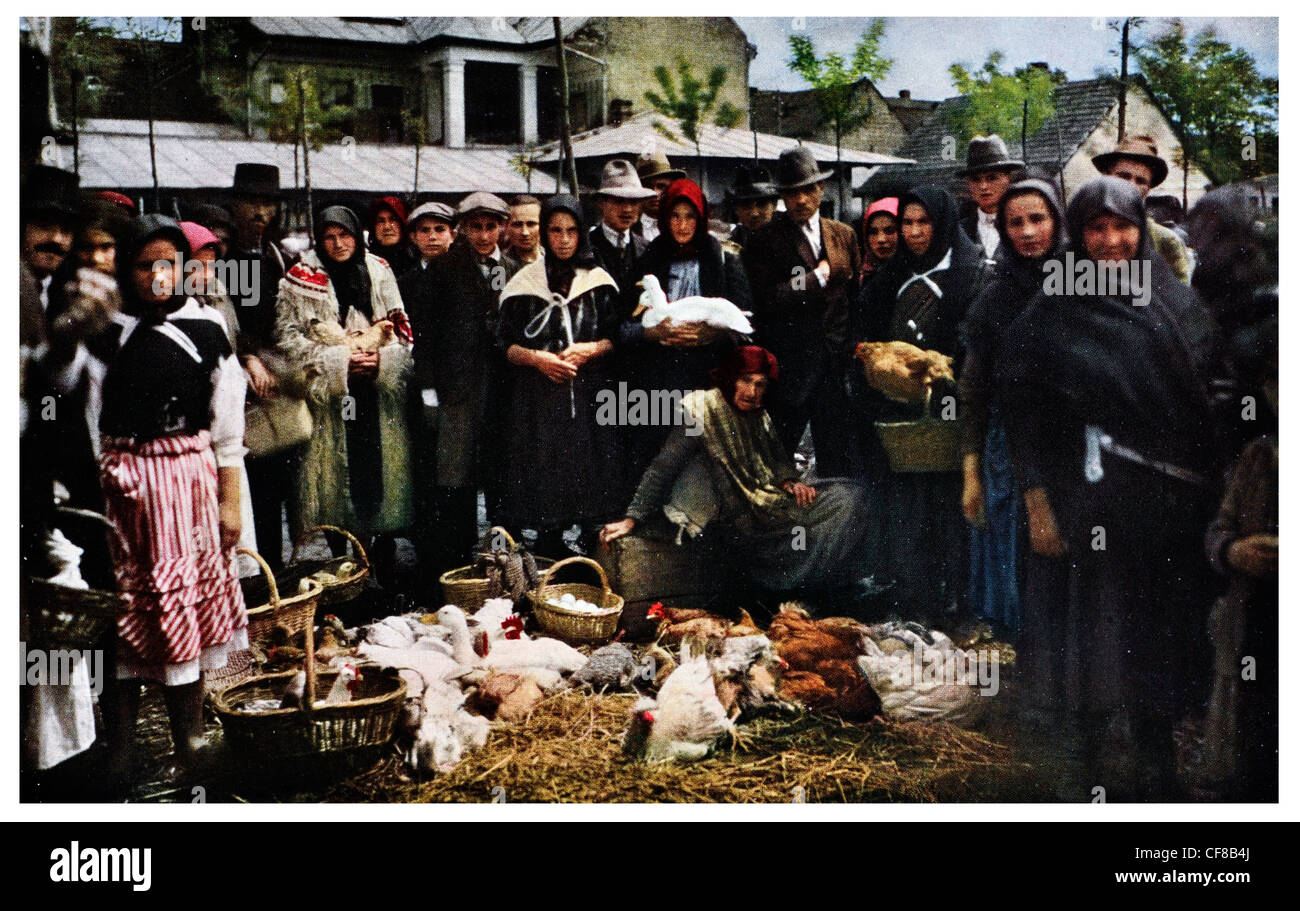 Poultry market at Mukacevo Central Ruthenia Czechoslovakia. 1927 - Stock Image
