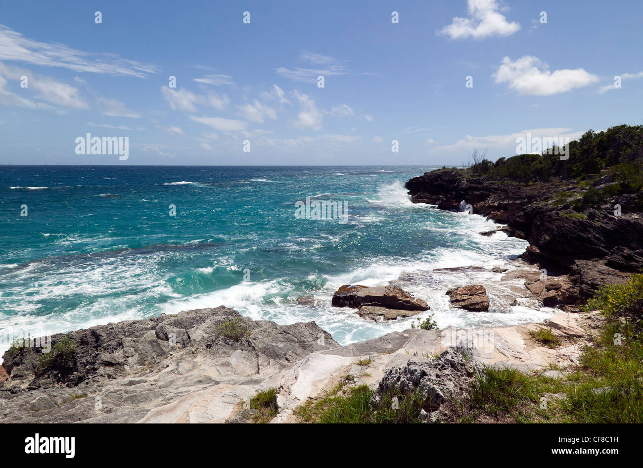 Coastal section of Spittal Pond Nature Reserve, Smith's Parish, Bermuda - Stock Image