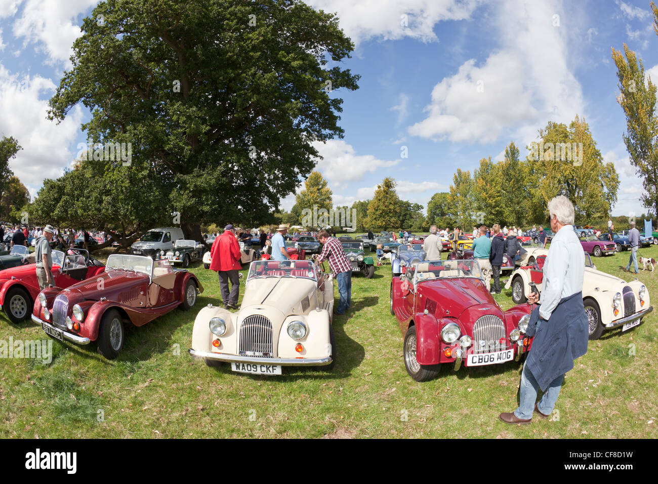 Front view of a row of Morgan sports car at the Thornfalcon Classic Car Show