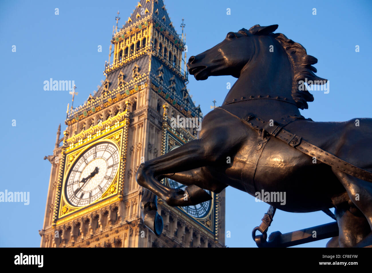 Horse And Chariot Stock Photos Amp Horse And Chariot Stock