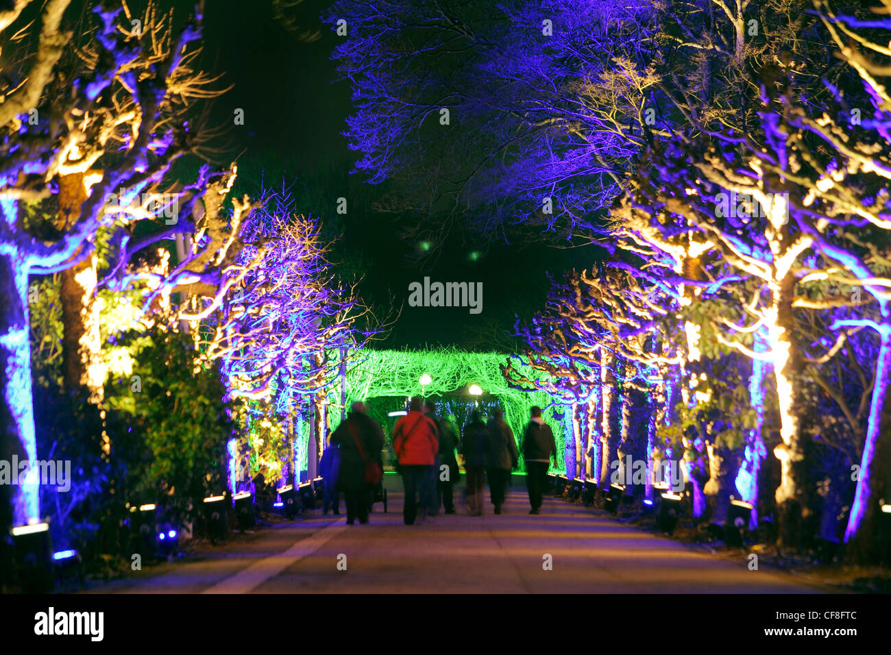light art installations in gruga park in essen germany light