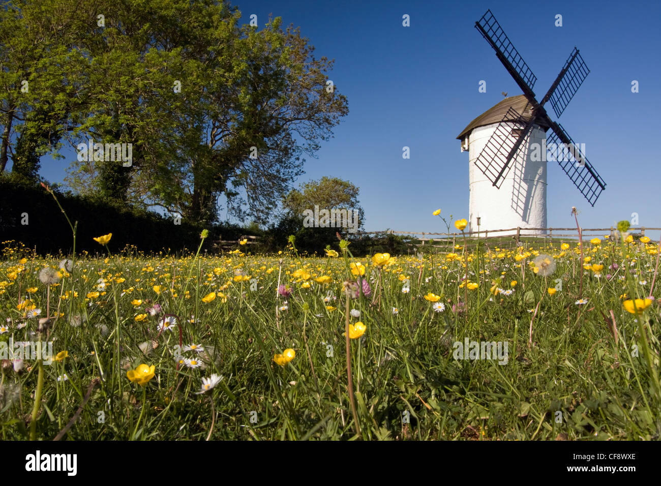 Ashton Windmill at Chapel Allerton. The first mill on the site was medieval - Stock Image