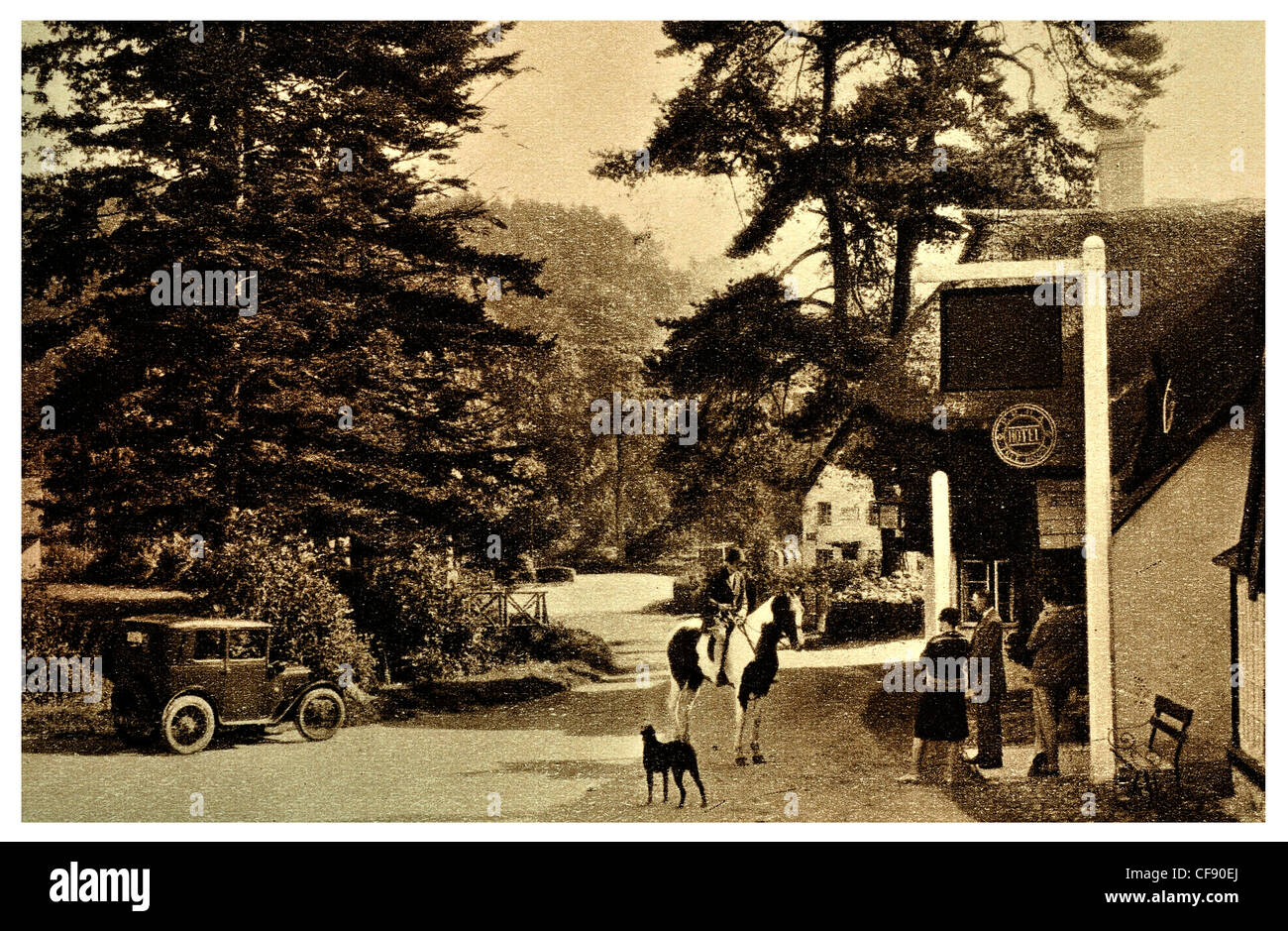 Winsford tavern Inn Pub Public house shop village horse riding dog thatched thatch cottage Somerset South West England - Stock Image