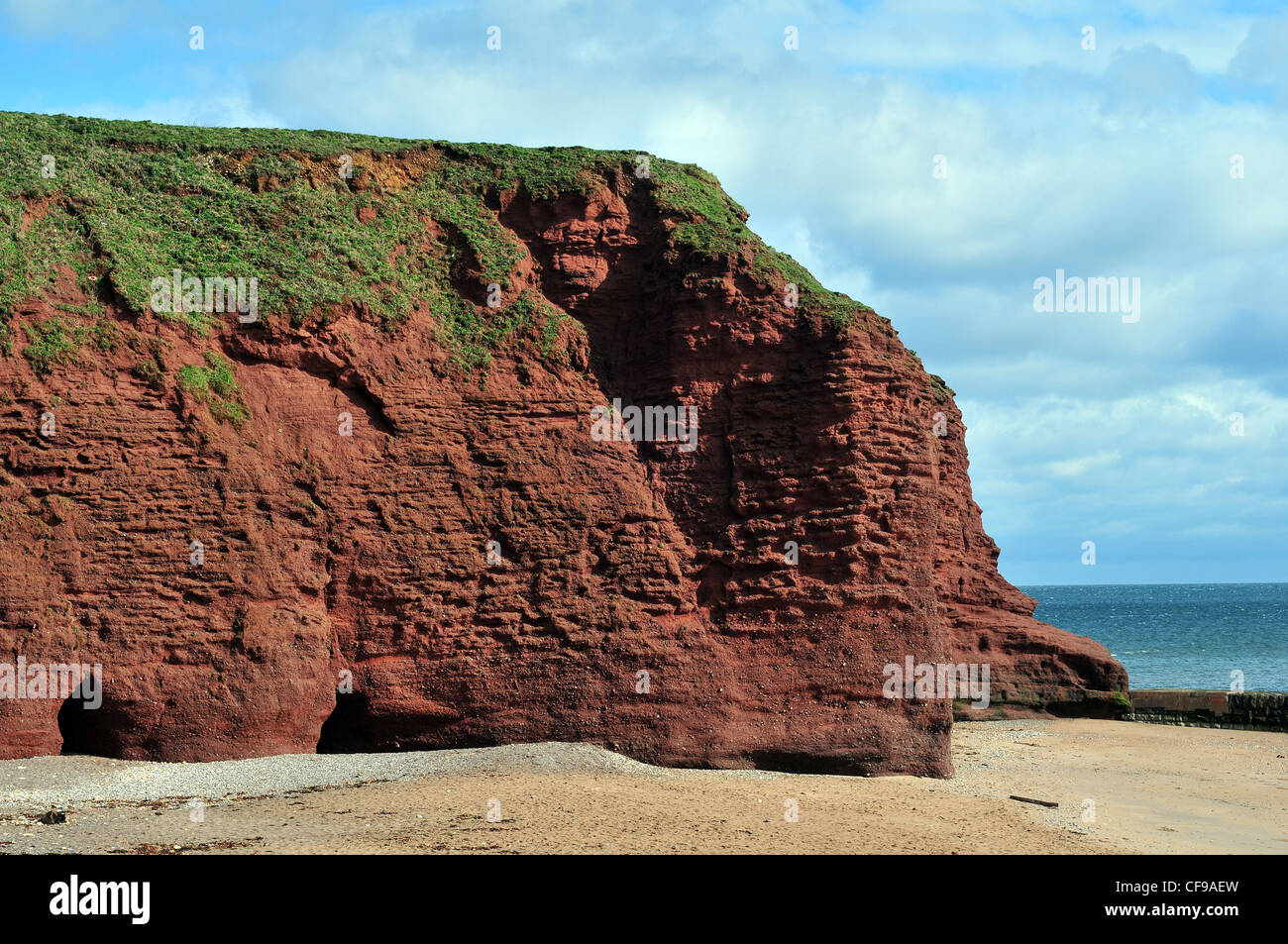 A cliff of Old Red Sandstone at Langstone Rock, Dawlish, South Devon - with caves eroded into the base. - Stock Image