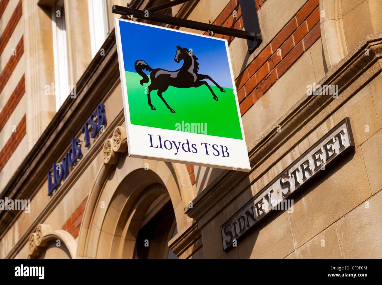 Lloyds TSB bank sign, Cambridge UK - Stock Image