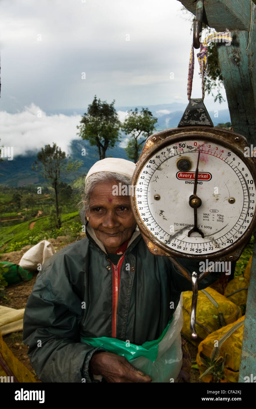 An old woman holding an old scale used to weigh the Tea leaves picked in the Tea plantations in Sri Lanka. - Stock Image