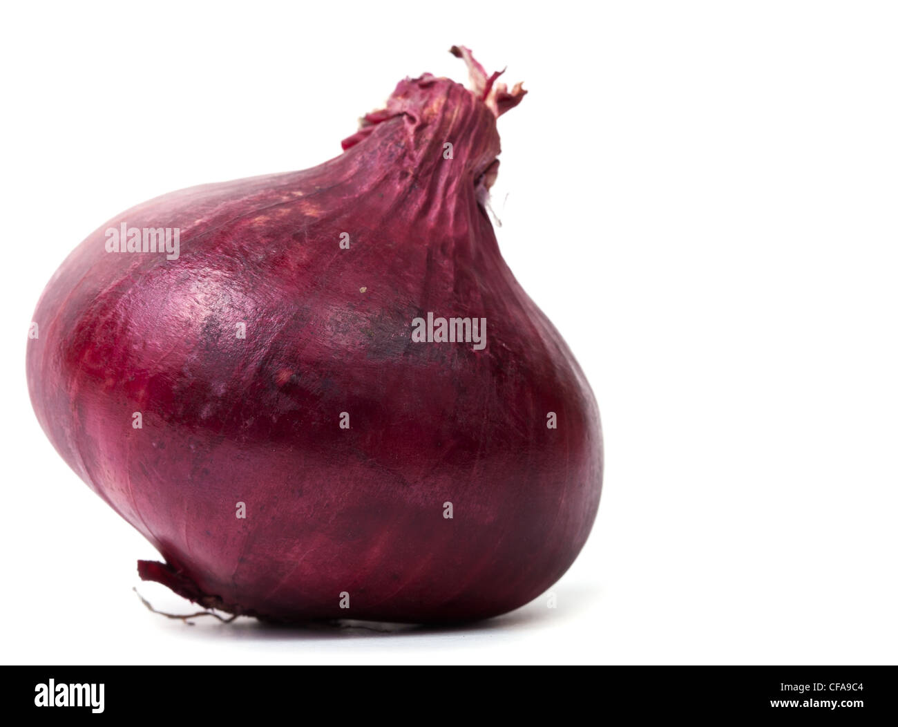 Single red onion bulb isolated on white background with shadow - Stock Image