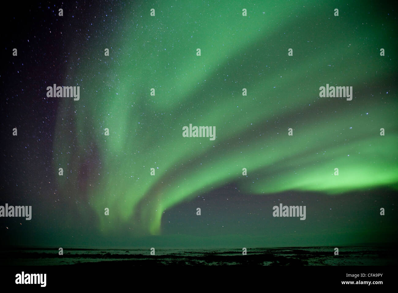 Northern Lights and starry skies near the Seal River estuary along the Hudson Bay coast (north of Churchill) in - Stock Image