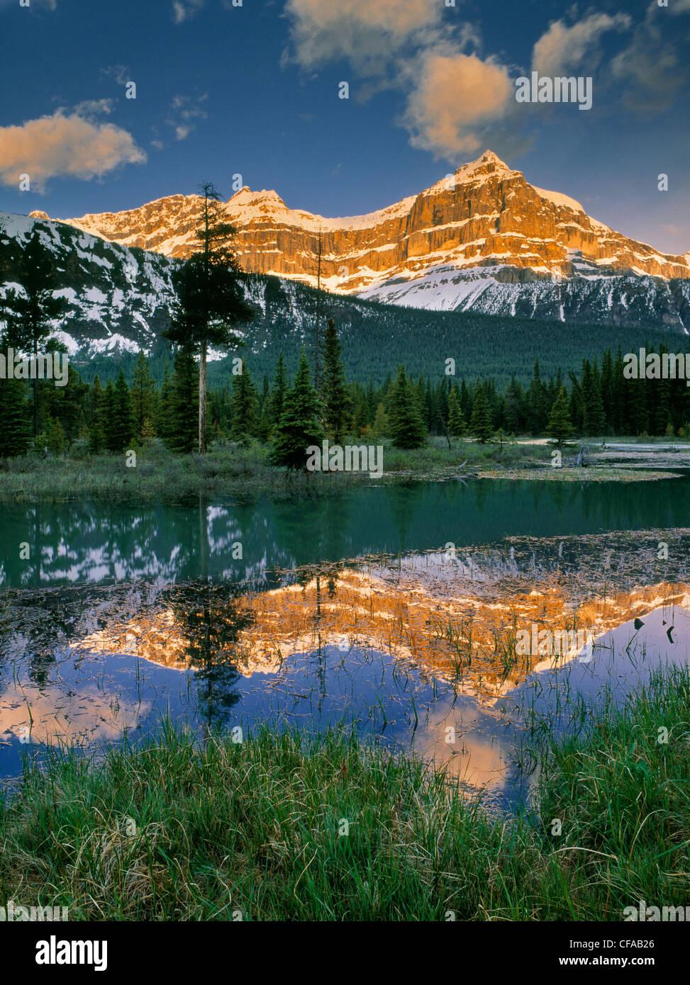 Mount Epaulette and Mistaya River, Banff National Park, Alberta, Canada. - Stock Image