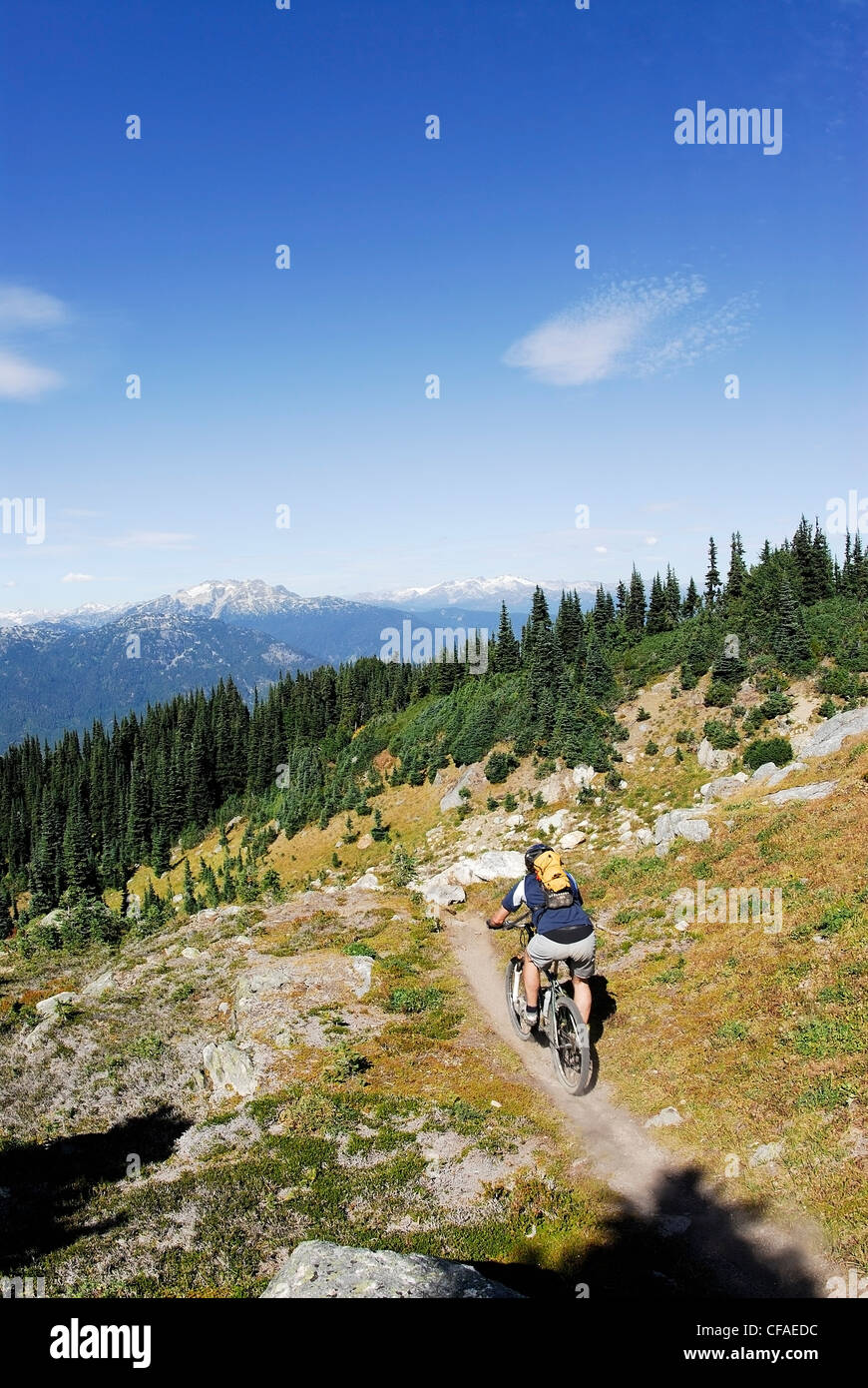Mountain Biker begins the descent to Khyber Pass. Whistler, British Columbia, Canada. - Stock Image