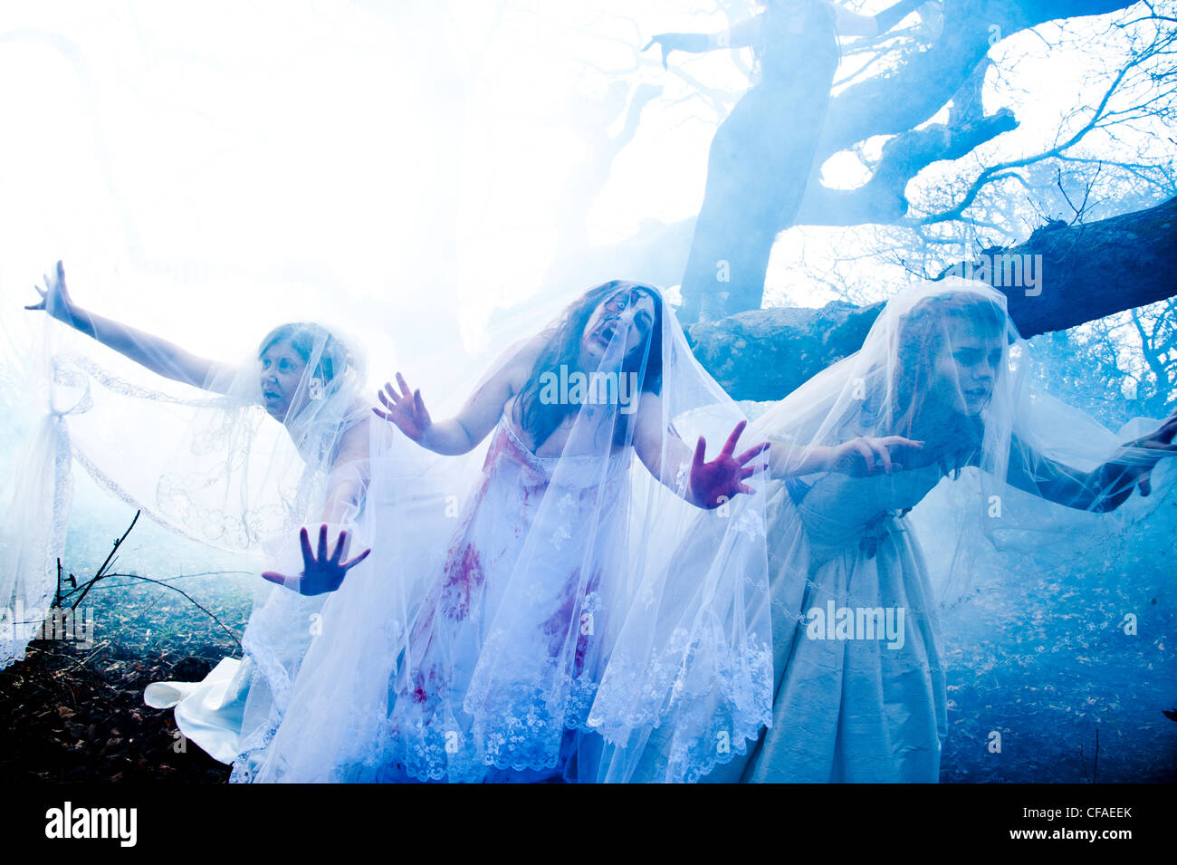 Three young women dressed as brides taking part in a Zombie bride 'trash the wedding dress' - Stock Image