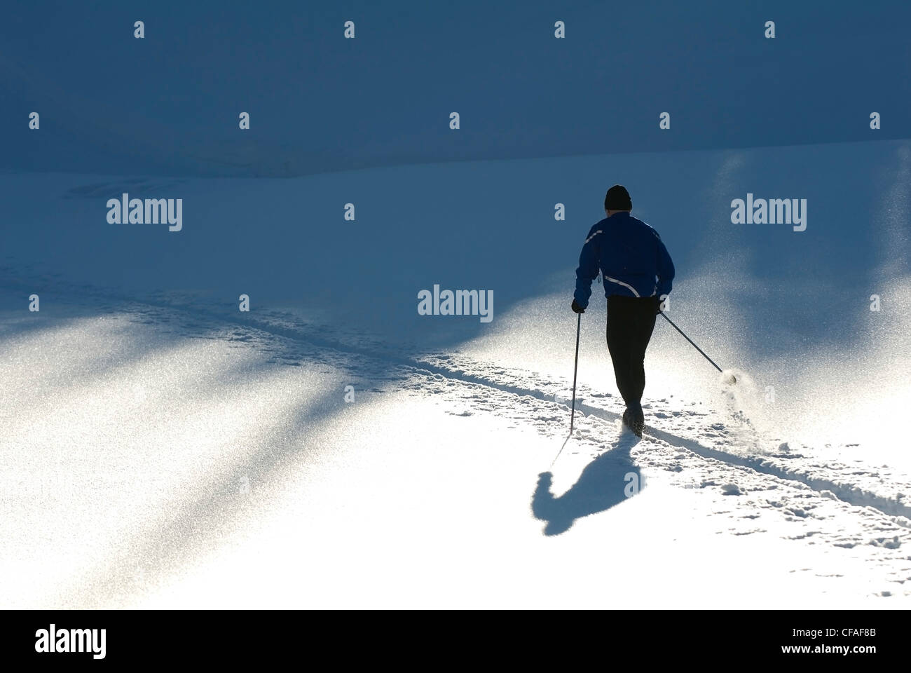 Middle aged man snowshoeing in afternoon sun, Sun Peaks Resort, British Columbia, Canada. - Stock Image