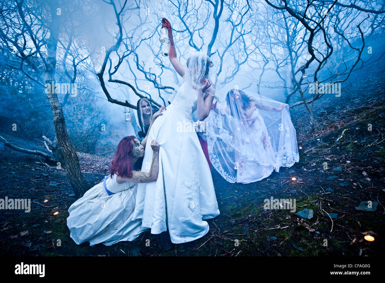 young women girls dressed as brides taking part in a Zombie bride ...
