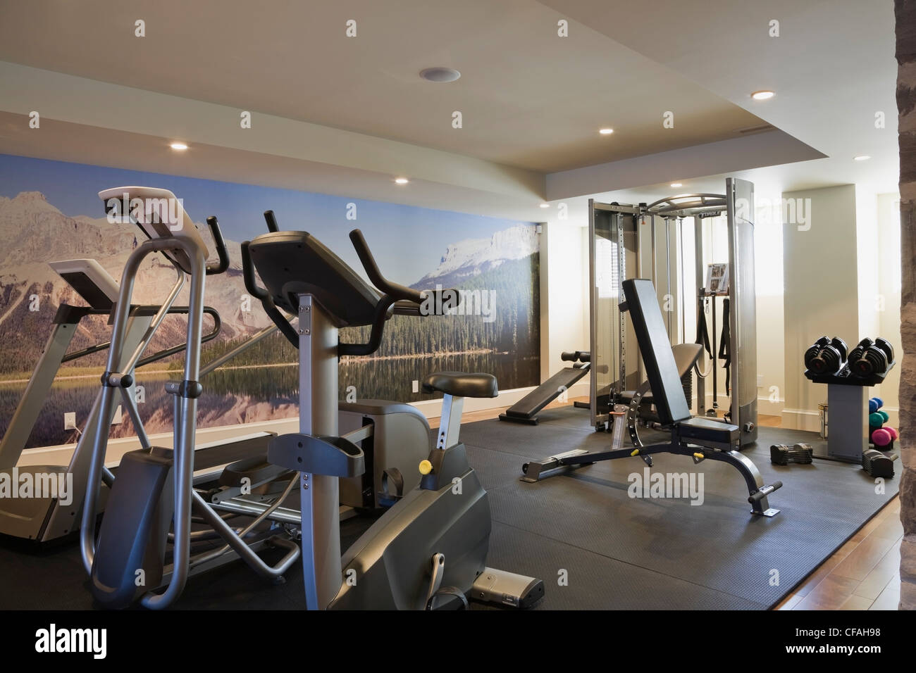 Basement exercise room with fitness equipment in a residential