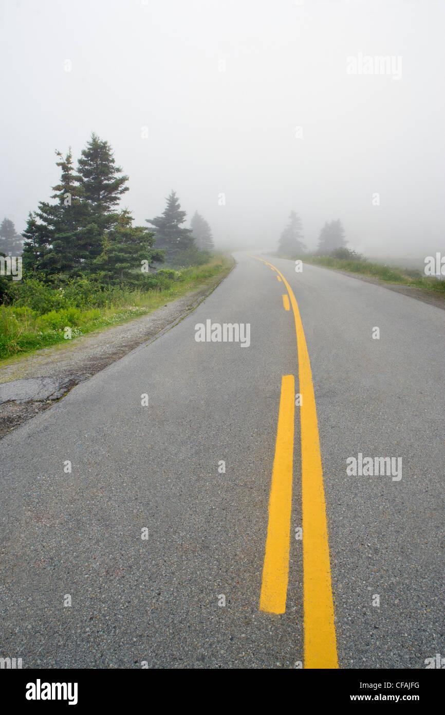Road along Victoria Lake in Fog near Western Head, Nova Scotia, Canada. - Stock Image